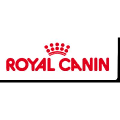 Семинар ТМ Royal Canin для заводчиков кошек в Николаеве