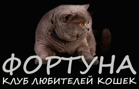 Клуб любителей кошек «ФОРТУНА»